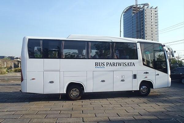 bus mdium pndek Boavista Rent Car (Copy)-min
